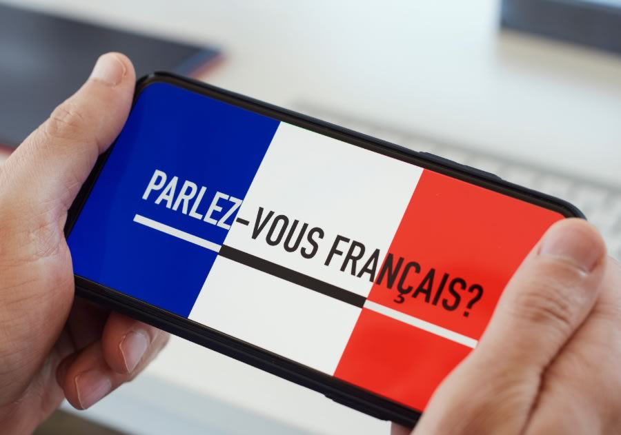 learn French beginner image